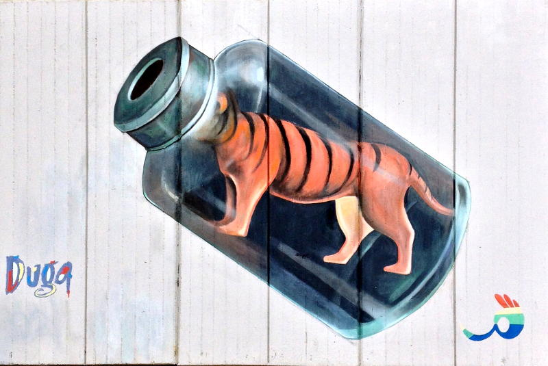 Tiger Medicine or a tiger in a bottle.