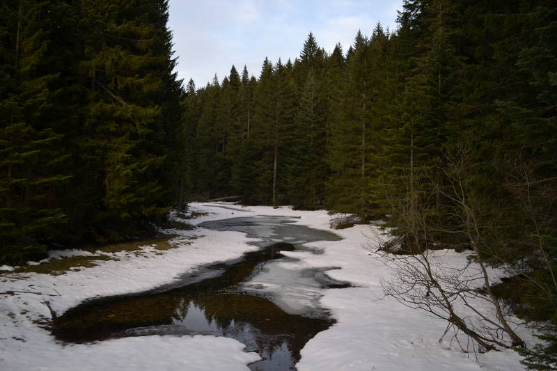 Early Spring in Durmitor National Park