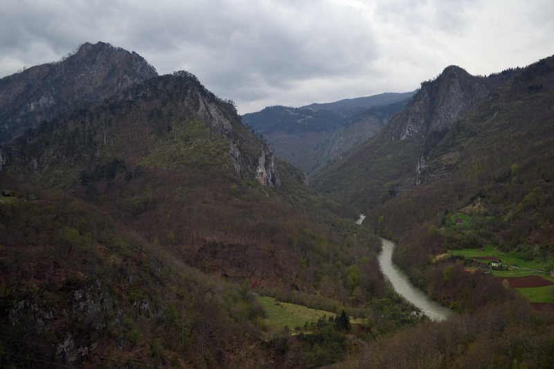 Tara Canyon in Durmitor National Park