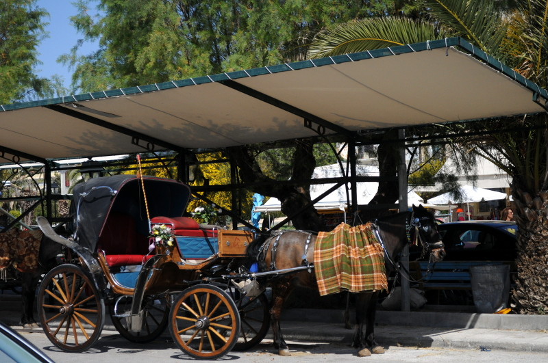 carriage ride, aegina - meanderbug