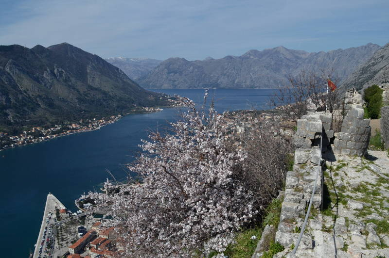 Kotor - view from flag level - Meanderbug