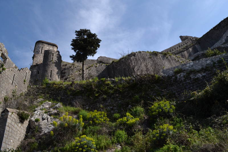 Looking up at St. John's fortress in Kotor - Meanderbug