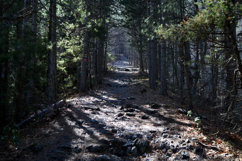 Hiking trail on Mount Olympus - Meanderbug