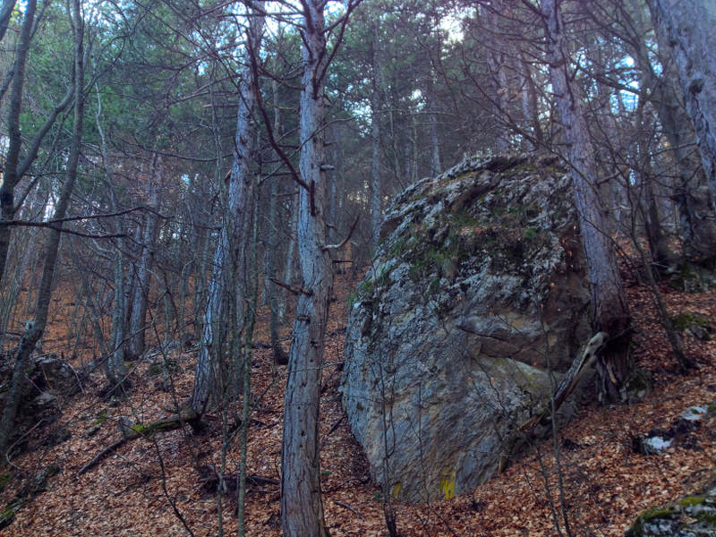 A boulder along the path on Mount Olympus - Meanderbug