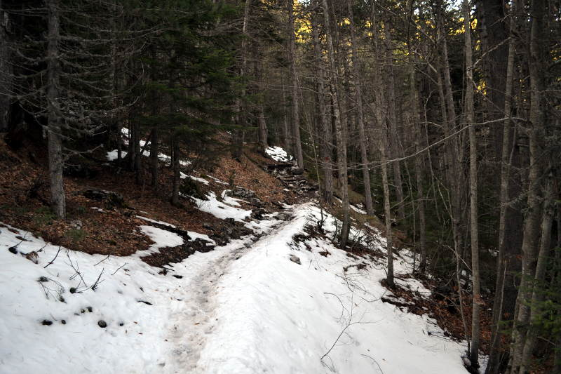 Mount Olympus snow trail - Meanderbug