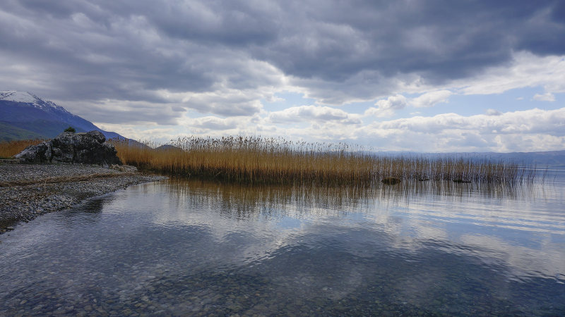 Lake Ohrid reeds and mountains - meanderbug
