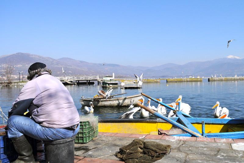fisherman, Kastoria, Greece, Meanderbug