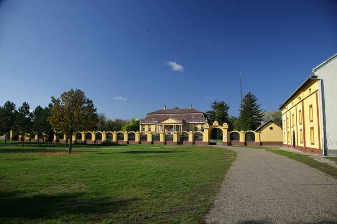 kulpin_muzej1