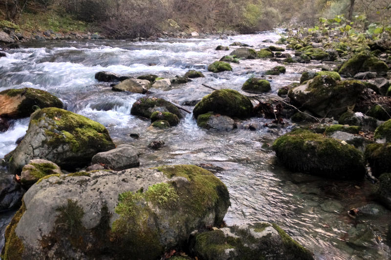 The river next to our wild campsite in Mavrovo National Park