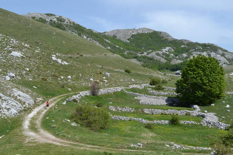 Marathon on Mt. Lovčen in Montenegro