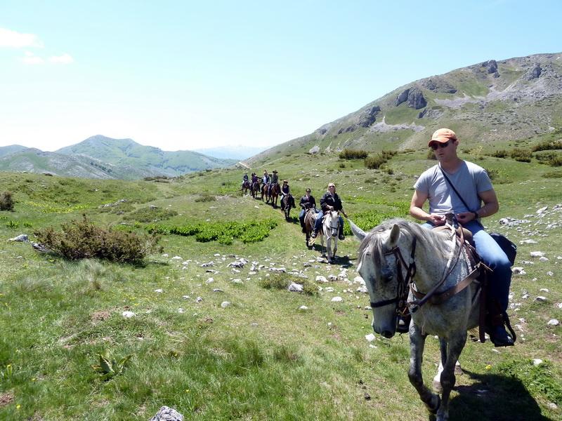 horsebackridingMK