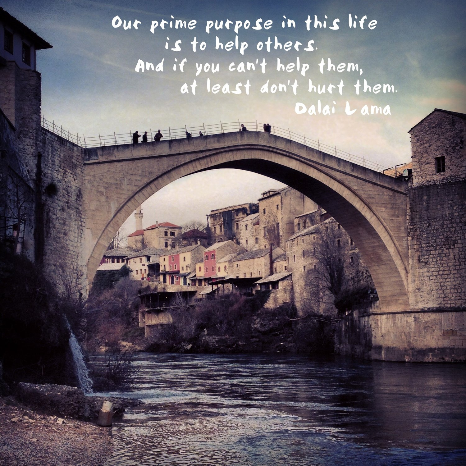 Prime purpose in this life is to help others ~Dalai Lama