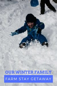 Oh the joy of little boys sledding!