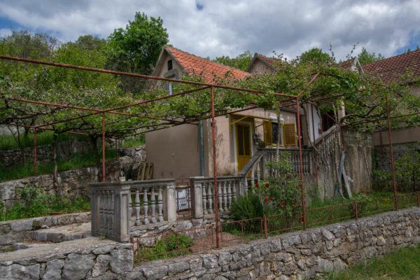 Agape House and community garden