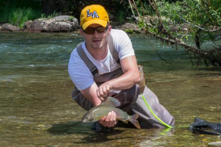 Fly fishing grayling in Lim River