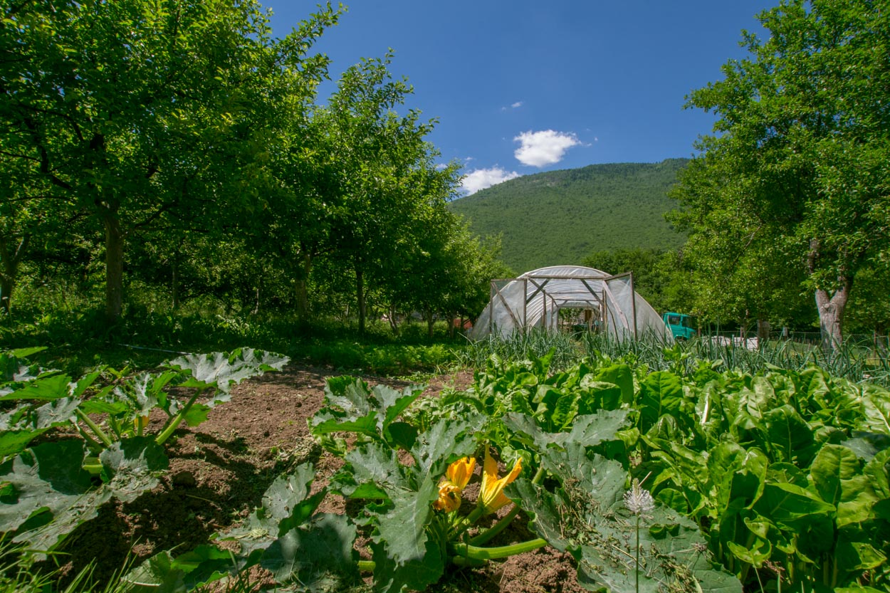mitric farm stay greenhouse and garden near Piva Lake
