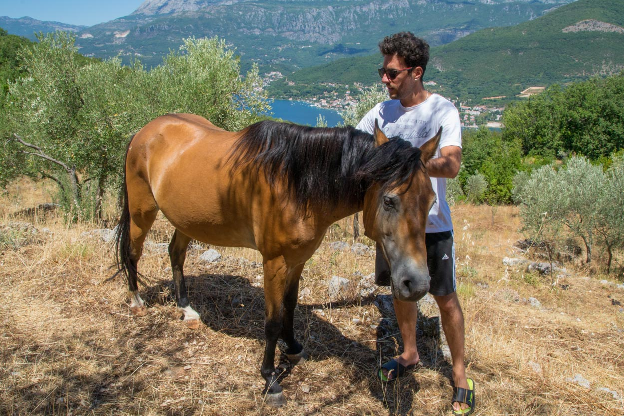 Jovan and Cookie the horse at Old Mill on Lustica farm stay in Montenegro