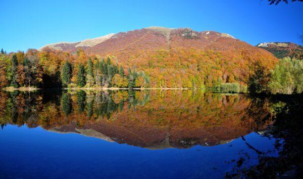 Biogradska Jezero Lake in Biogradska Gora National Park