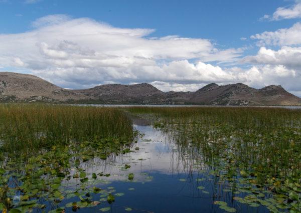 Picturesque view of Skadar Lake in Montenegro