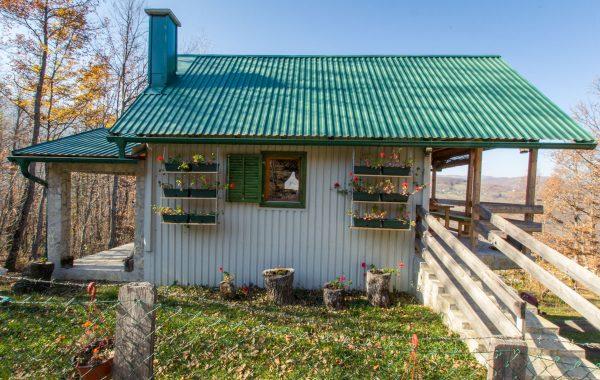Beekeeper's Cabin Farm Stay