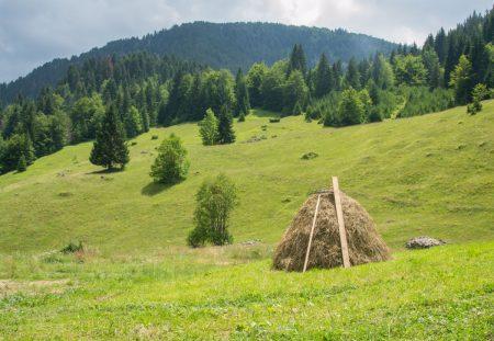 Suvodo Katun in Biogradska Gora National Park