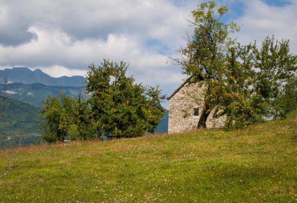 Farm stay near Moraca Monastery
