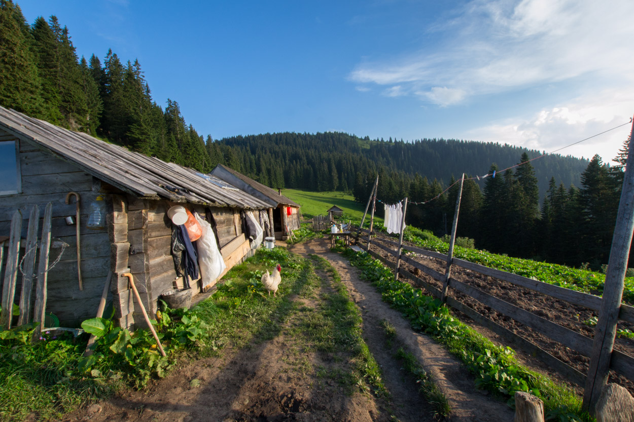 Permaculture at Kaludarske Kape Katun in Northern Montenegro