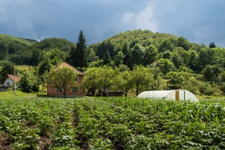 Bulatovic Farm Stay Near Lake Biograd
