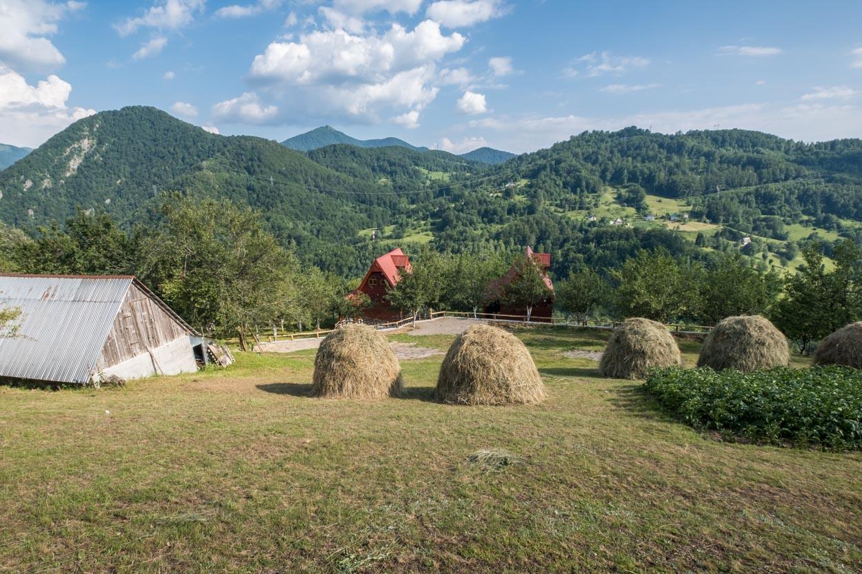 Fern Farm for couples or family travel at Biogradska Gora National Park